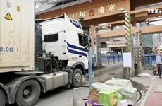 致力解决谅山省新青口岸农产品滞留现象