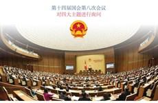 图表新闻:第十四届国会第八次会议 对四大主题进行询问