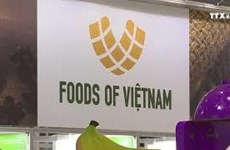 在第二届中国国际进口博览会的越南展位面积翻一番