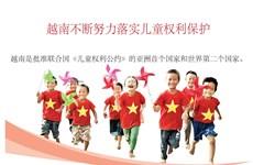 图表新闻:越南不断努力落实儿童权利保护