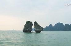 下龙——国际游客向往的旅游目的地