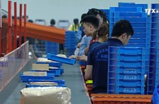 电商时代与越南电子商务物流的发展趋势