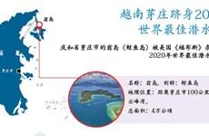图表新闻:越南芽庄跻身2020年 世界最佳潜水胜地