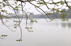 组图:冬春交替时令人迷醉的还剑湖景色