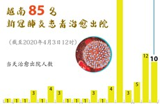 图表新闻:越南85名新冠肺炎患者治愈出院