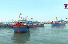 中部地区渔民坚持出海 牢牢捍卫越南海洋岛屿主权