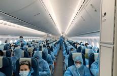 组图:越南将旅居英国的337名越南公民运送回国