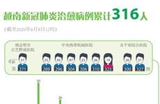 图表新闻:越南新冠肺炎治愈病例累计316人