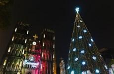 组图:巨型圣诞树星光绽放 为首都河内点亮整个冬季