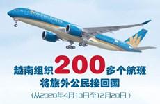 图表新闻:越南组织200多个航班将旅外公民接回国