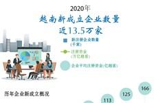 图表新闻:2020年越南新成立企业数量 近13.5万家