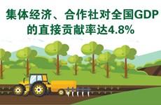 图表新闻:集体经济、合作社对全国GDP的直接贡献率达4.8%