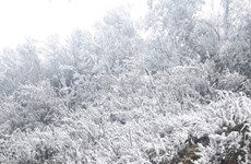 组图:强冷空气袭击  冰雪覆盖北部山区山峰
