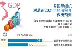 图表新闻:各国际组织对越南2021年经济前景做出预测