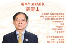 图表新闻:裴青山被任命为越南外交部部长