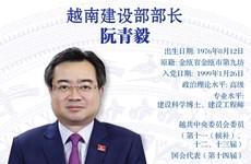 图表新闻:阮青毅被任命为越南建设部部长