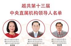 图表新闻:越共第十三届中央直属机构领导人名单
