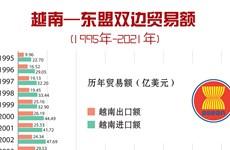图表新闻:越南-东盟双边贸易额(1995-2021年)