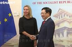 越南政府副总理范平明与欧盟委员会副主席进行会谈