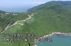 山茶半岛——岘港市犹如仙境一般的风景