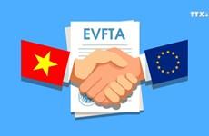 EVFTA获批为越欧双边经贸投资合作翻开新篇章