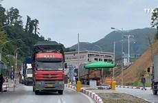 新型冠状病毒感染肺炎疫情影响到越南进出口活动