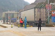越南各口岸积极为货物通关创造便利条件
