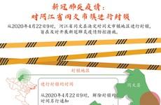 图表新闻:新冠肺炎疫情:河江省同文市镇进行封锁