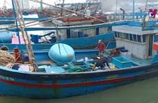 越南渔业协会反对中国在东海实施的捕鱼禁令