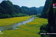 越南旅游宣传片的播放量突破 100 万大关