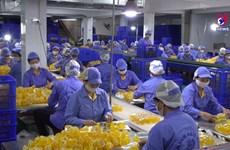 越南致力于全面加强国家品牌的知识产权保护