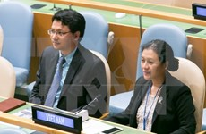 越南呼吁联合国安全理事会在防止水冲突中发挥积极作用