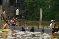 """题为""""以儿童为中心减少自然灾害风险""""的国家会议在宁顺省举行"""