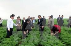 国会主席阮氏金银:海阳省各级党委、政府重视并为农业生产创造便利