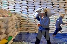 2016年越南大米出口总额达22亿美元