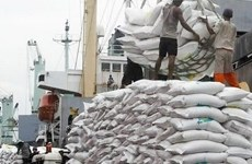 2017年越南大米出口额预计将上升