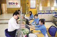 2016年越南投资与发展银行税前利润逾7.5万亿越盾