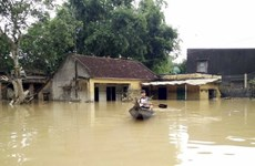 越南通讯社为南中部和西原灾区受灾群众募捐善款