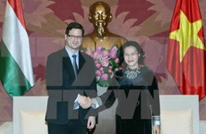 越南国会主席阮氏金银会见匈牙利议会副议长古亚士•盖尔盖伊