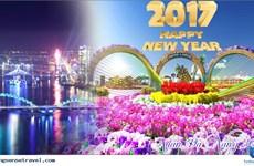 2017春节假期岘港市旅游人数将猛增