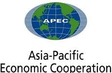 越南为亚太经合组织作出积极贡献