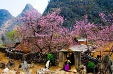 越南传统春节度假五大天堂