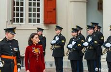 越南驻荷兰大使吴氏和向荷兰国王威廉•亚历山大递交国书