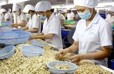 越南大力减少初级农产品出口量