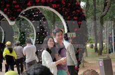 春节期间赴越南各地参观旅游的游客量大幅增加