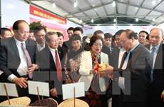 越南政府切实保护高科技农业企业与合作社的知识产权与合法利益