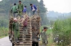 越南强调公私合作与国际合作在减贫工作中的重要性