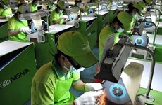 越南政府与企业同行 协助企业发展