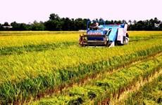 面对融入国际挑战的九龙江平原农业
