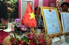 越南火龙果亮相德国柏林国际水果蔬菜博览会
